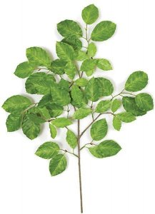 "Earthflora's 24"" Common Beech Branch - 50 Leaves - Green - FIRE RETARDANT"