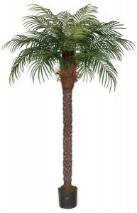 8' Date Palm Tree - Synthetic Trunk - 834 Leaves