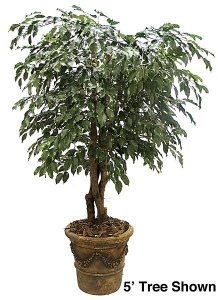 8' Ficus Tree - Natural Trunks - 3,284 Leaves - Green- Custom Made