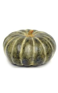 "8"" Foam Gourd - Weighted - Green/Yellow"