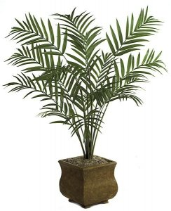 8' Kentia Palm Tree - 15 Fronds - Green