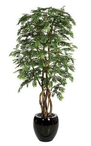 8' Locust Tree - Natural Trunk - 12,960 Green Leaves
