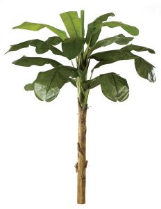 9' Banana Palm - Natural Trunk - 14 Fronds - 1 Bud - Green