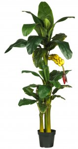 EF-2594 6' and 3' Double Banana Tree one hanging fruiting branch