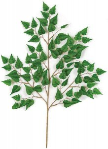 "25"" Silver Birch Branch - 78 Leaves - Green- sold by dozen"