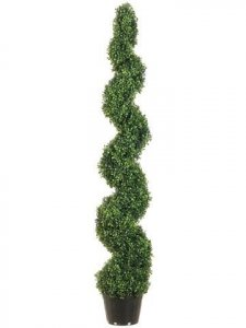 Outdoor Pond Boxwood Spiral