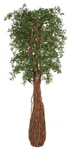 Earthflora's 7 Foot Live Oak Tree With Exotic Wood Trunk