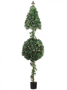 Cone/Ball Shaped Ivy Topiary
