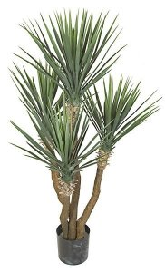 "57"" Plastic Outdoor Yucca Rostrata Plant - Synthetic Trunk - 235 Green Leaves"