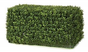 "23"" x 11"" x 12"" Boxwood Hedge - New Style Leaf - Tutone Green"