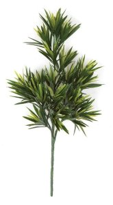 Earthflora's 14 Inch Podocarpus Pick (Sold By Dozen) - Fire Retardant
