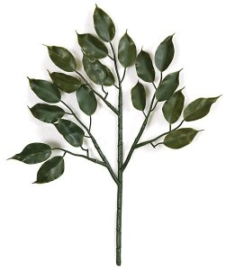 "19"" Outdoor Ficus Branch - 21 Leaves - Green"