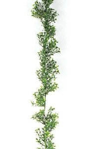 9' Plastic Outdoor  Boxwood Garland - Tutone Green