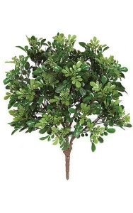 "20"" Plastic Boxwood Bush - 5.5"" Stem - Green"