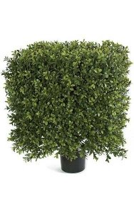 "16"" x 21"" Plastic Outdoor Boxwood Square Topiary - Natural Trunk - 16"" Width - Tutone Green"