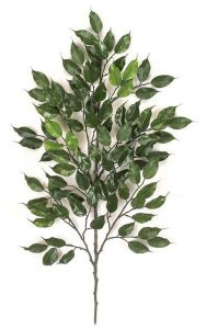 38'' Outdoor Ficus Branch - 98 Leaves - Green