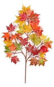 "22"" Canadian Maple Branch - 34 Leaves - Fall (sold by dozen)"
