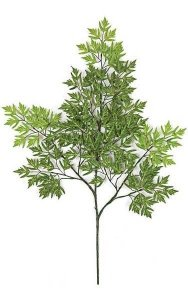 "24"" Ming Aralia Branch - Green (sold by dozen)"