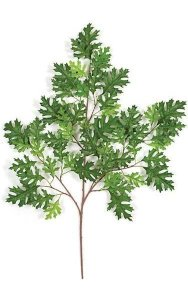 "38"" Pin Oak Branch - 55 Leaves - Green"