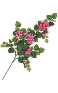 "31"" Bougainvillea Branch - 62 Leaves - 39 Flowers - Beauty"