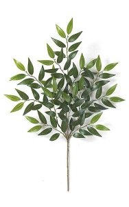 "27"" Smilax Branch - 91 Leaves - Green"