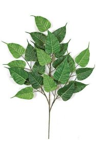 "31"" Bo Ficus Branch - 24 Leaves - Green"