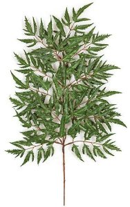 "21"" Lace Aralia Branch - 112 Leaves - Green  (sold by dozen)"