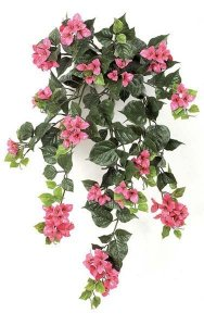 "36"" Hanging Bougainvillea Bush - 18 Flower Clusters - Fuschia"