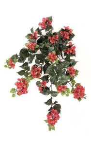 "36"" Outdoor  Bougainvillea Bush- 18 Flower Clusters - 19"" Width - Wine Red"