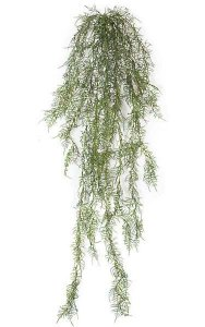 "5' Plastic Outdoor Hanging Asparagus Bush - Green Leaves - 13"" Width"
