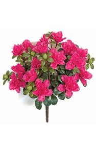 "16"" Outdoor Azalea Bush - 16 Beauty Flowers - 4"" Stem - Bare Stem"
