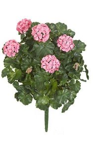 "26"" Outdoor Geranium Bush - 67 Leaves - 5 Flowers - 4 Buds - Pink - Bare Stem"