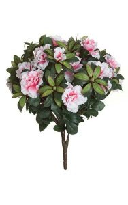 "17"" Azalea Bush - 508 Leaves - 12 Flowers - 29 Buds - Pink/White"