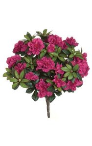 "17"" Azalea Bush - 508 Leaves - 12 Flowers - 29 Buds - Beauty"
