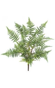 "32"" Tree Fern - 37 Fronds - 33"" Width - Green - Bare Stem"