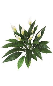 "14"" Spathiphyllum Bush - Soft Touch - 22 Leaves - 7 Cream/Yellow Flowers - Bare Stem"