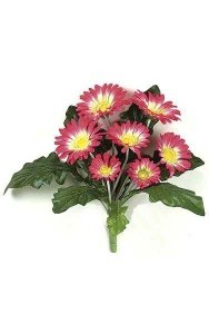 "12"" Gerbera Daisy Bush - 8 Leaves - 7 Flowers - Beauty - Bare Stem"
