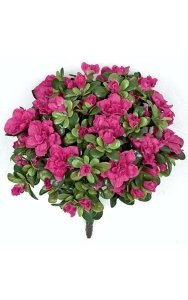 "12"" Azalea Bush - 154 Leaves - 14 Flowers - 54 Buds - Beauty"