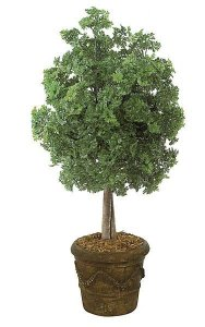 "50"" Ming Aralia Bush - Natural Trunk - Green - Weighted Base"