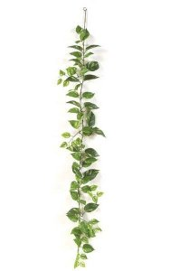 6' Pothos Garland - 82 Leaves - Green/Yellow
