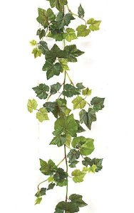 6' Grape Ivy Garland - 124 Leaves - Natural Stem - Tutone Green