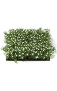 "10"" Plastic Grass with Gypso - 2.5"" Height - Green/White"