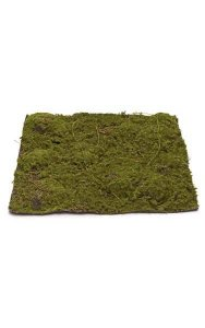 "13.5"" Plastic Moss Mat - 13.5"" Square - Green/Brown"