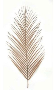 "A-0941 28"" Areca Palm Branch - No Wire - Tan"
