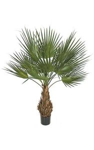 5' PVC Washingtonia Palm - Natural Trunk - 13 Green Fronds - 4' Width - Weighted Base