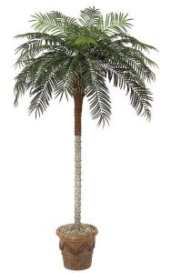 8.5' Phoenix Palm - Synthetic Trunk - 30 Fronds - Green - Bare Trunk