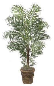 7' Deluxe Areca Palm - Synthetic Trunk - 24 Fronds - Green - Bare Trunk