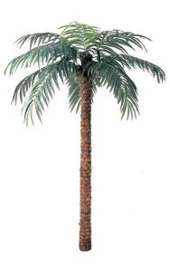 12' Coconut Palm - Natural Trunk - 15 Fronds - 3 Coconuts - Bare Trunk