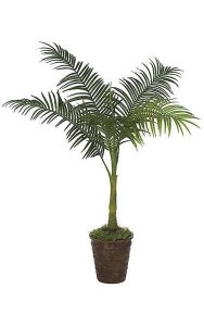 4' Areca Palm - Synthetic Trunk - 5 Fronds - Green - Bare Trunk