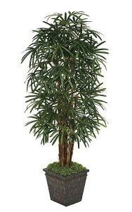 7' Lady Palm - 7 Natural Trunks - 170 Fronds - Green - Weighted Base